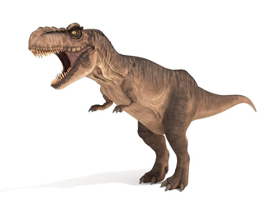 Tyrannosaurus Rex Rigged royalty-free 3d model - Preview no. 4