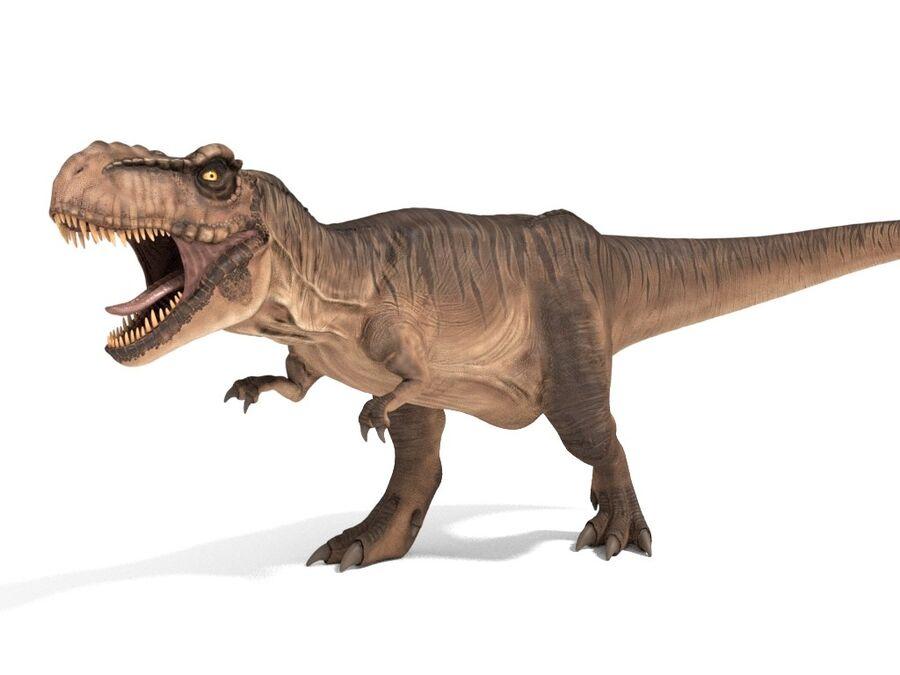 Tyrannosaurus Rex Rigged royalty-free 3d model - Preview no. 1