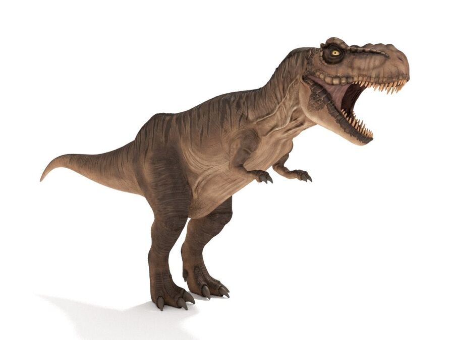 Tyrannosaurus Rex Rigged royalty-free 3d model - Preview no. 7