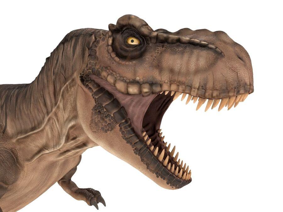 Tyrannosaurus Rex Rigged royalty-free 3d model - Preview no. 8