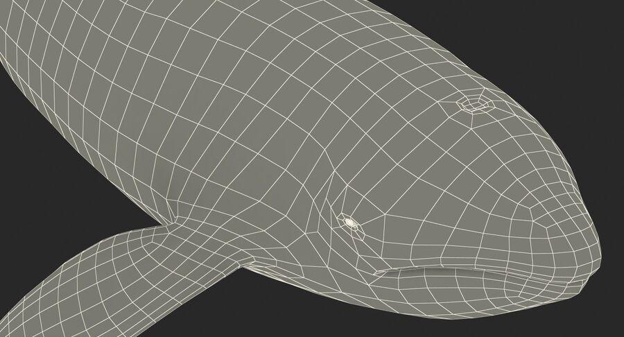 Orca royalty-free modelo 3d - Preview no. 19