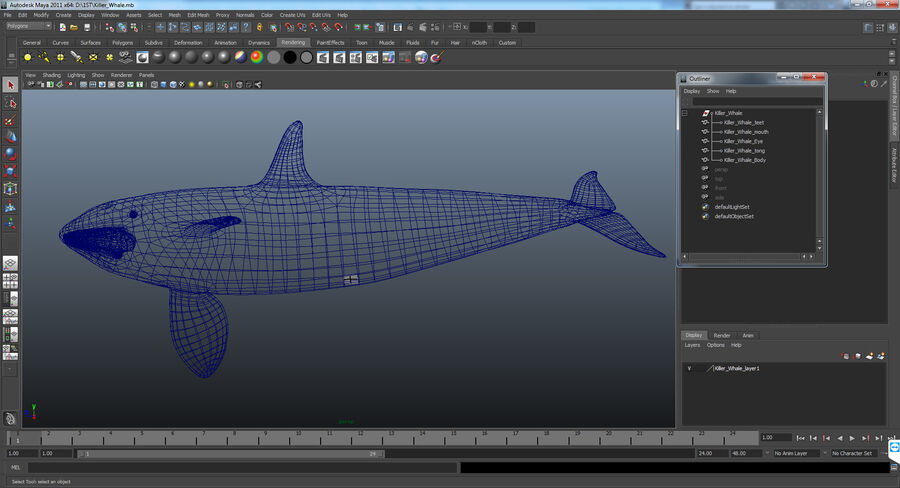 Orca royalty-free modelo 3d - Preview no. 13