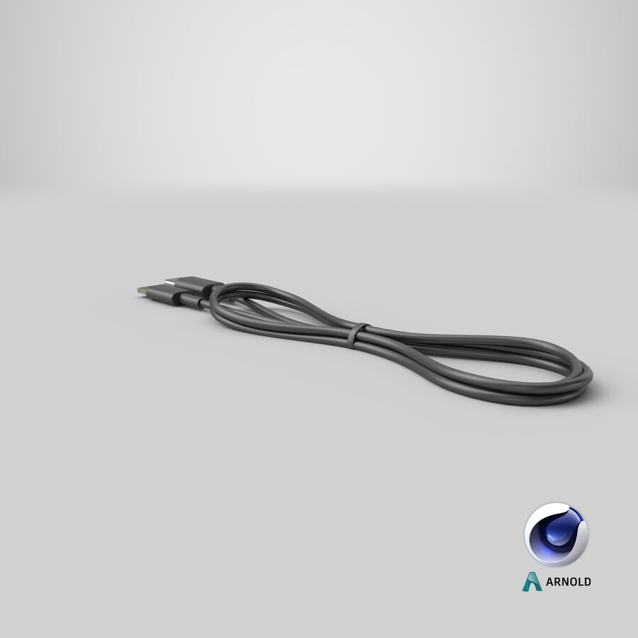 USB Type-C to Lightning Cable Black royalty-free 3d model - Preview no. 28