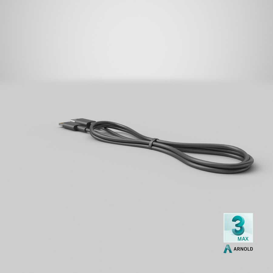 USB Type-C to Lightning Cable Black royalty-free 3d model - Preview no. 31