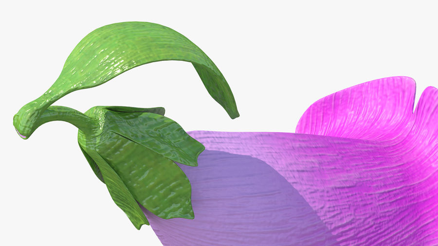 Purple Foxglove Flower royalty-free 3d model - Preview no. 6