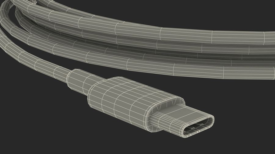 USB Type-C to Type-C Cable royalty-free 3d model - Preview no. 24