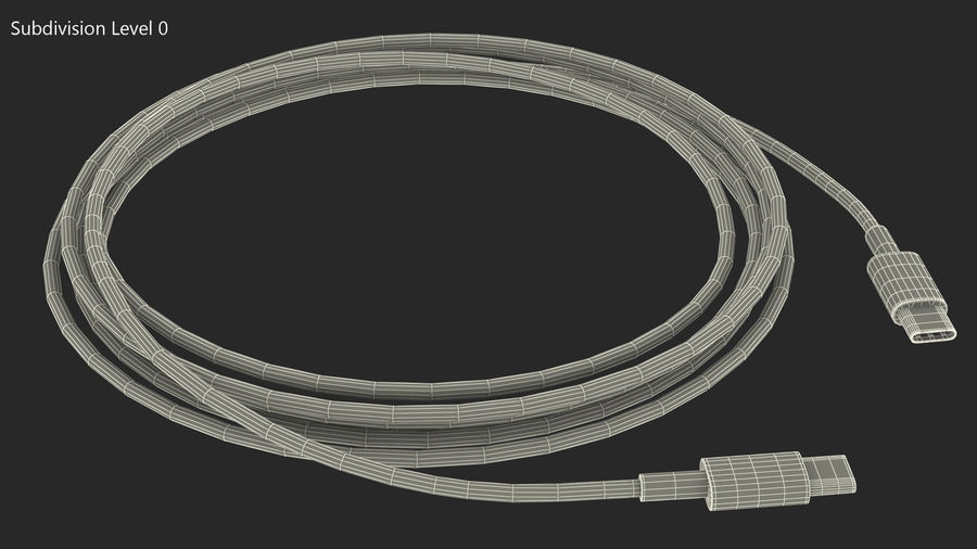 USB Type-C to Type-C Cable royalty-free 3d model - Preview no. 12