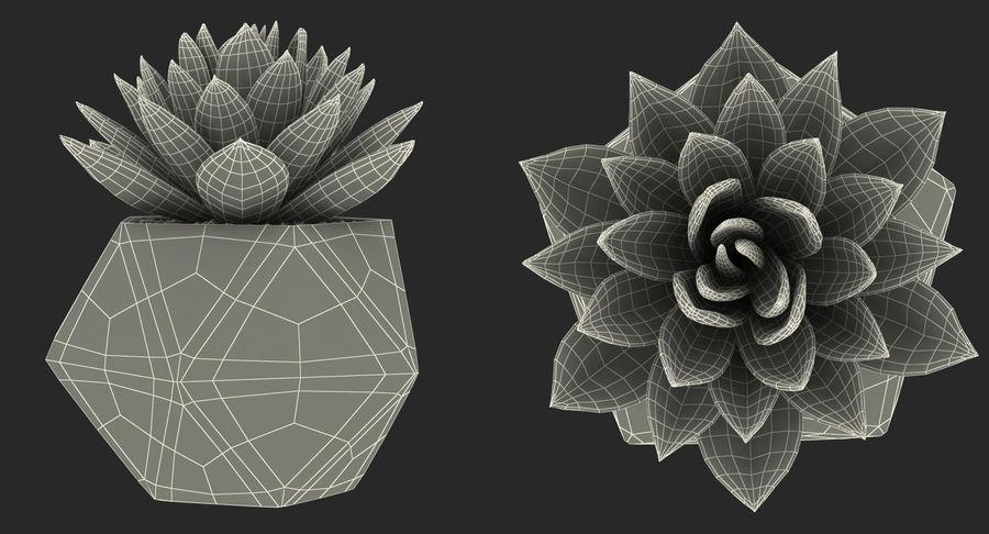 Rośliny ozdobne w doniczkach royalty-free 3d model - Preview no. 29