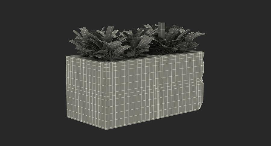 Rośliny ozdobne w doniczkach royalty-free 3d model - Preview no. 30