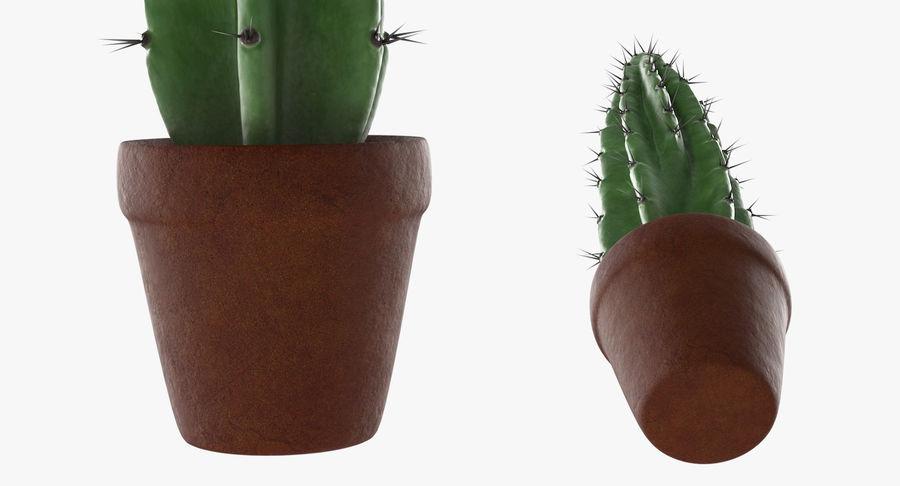 Rośliny ozdobne w doniczkach royalty-free 3d model - Preview no. 15