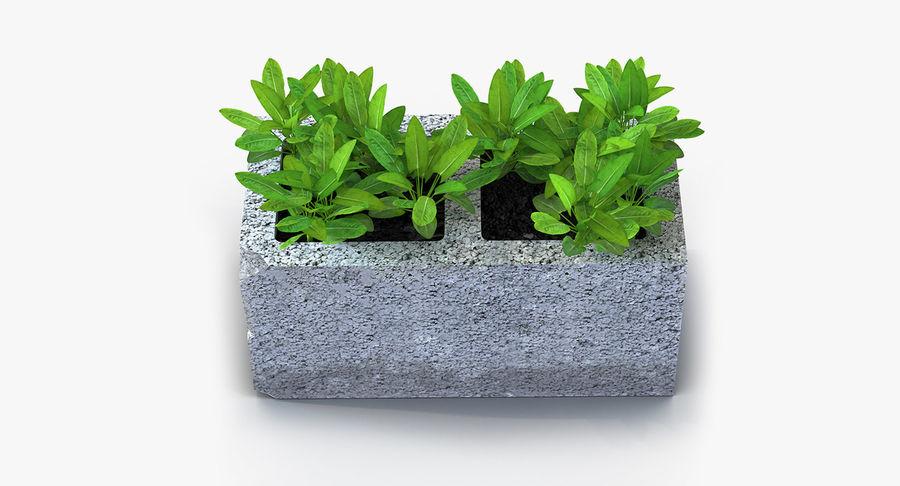 Rośliny ozdobne w doniczkach royalty-free 3d model - Preview no. 22
