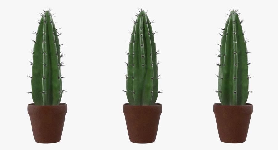 Rośliny ozdobne w doniczkach royalty-free 3d model - Preview no. 14