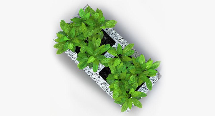 Rośliny ozdobne w doniczkach royalty-free 3d model - Preview no. 24