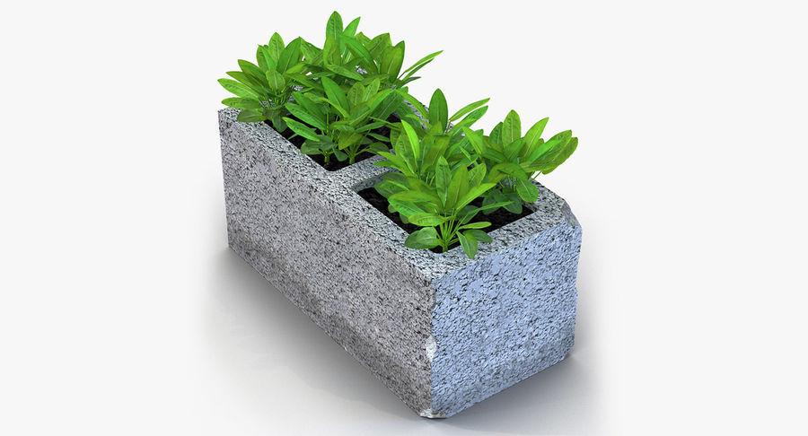 Rośliny ozdobne w doniczkach royalty-free 3d model - Preview no. 23