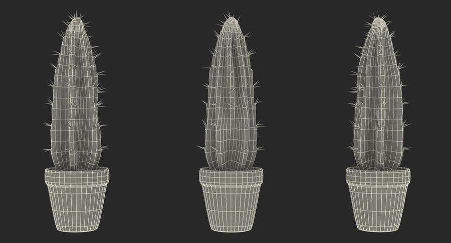 Rośliny ozdobne w doniczkach royalty-free 3d model - Preview no. 28