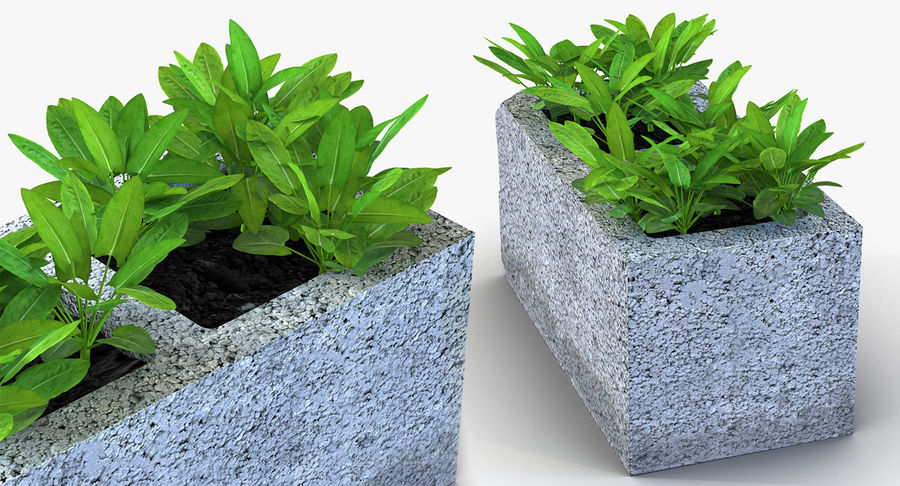 Rośliny ozdobne w doniczkach royalty-free 3d model - Preview no. 25