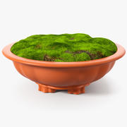 Flower Pot with Soil Fur 3d model