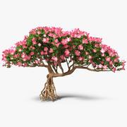 Bonsaï miniature avec des fleurs 3d model