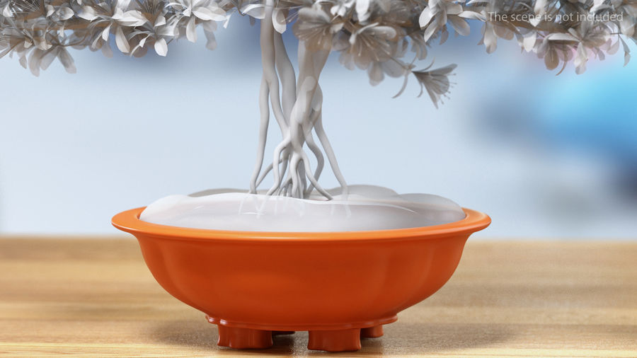Wide Shallow Flower Pot royalty-free 3d model - Preview no. 3