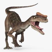 Proceratosaurus 3d model