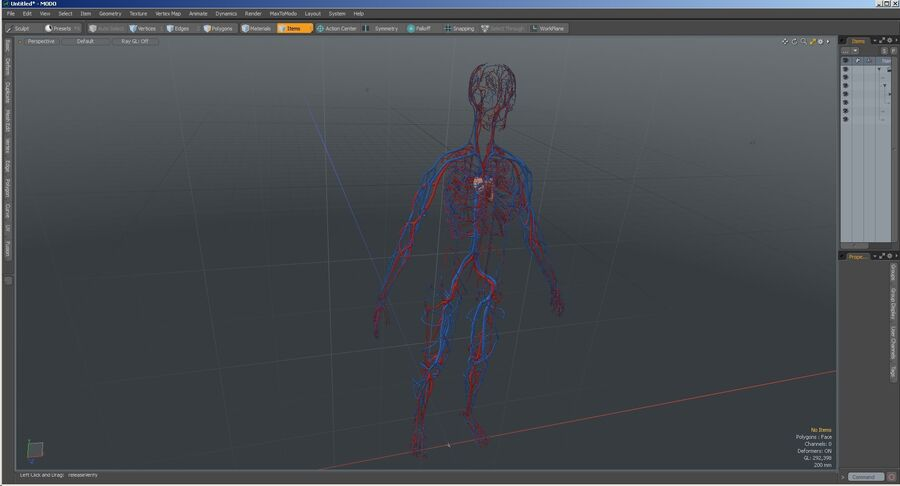 Anatomie du système cardiovasculaire féminin royalty-free 3d model - Preview no. 32