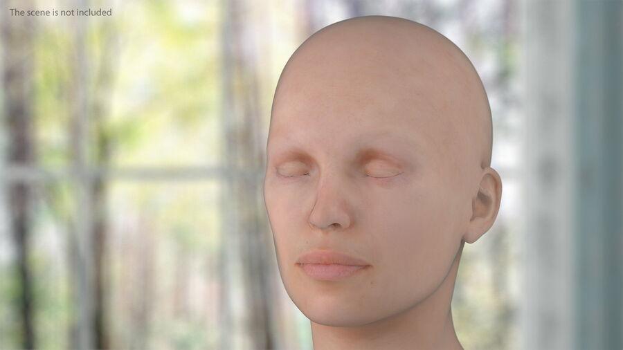 Volledige anatomie van het vrouwelijk lichaam royalty-free 3d model - Preview no. 21