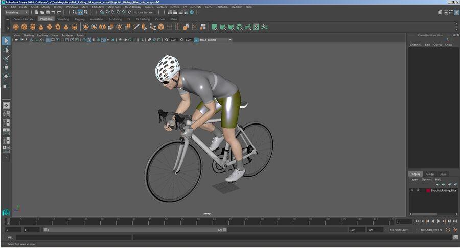 Bisikletçi Binme Bisikleti royalty-free 3d model - Preview no. 34