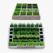 Kolekcja ogrodów warzywnych 3d model