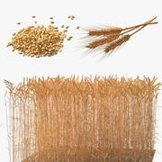 Zbieranie pszenicy 2 3d model