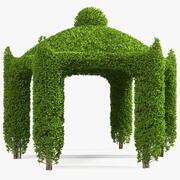Tuinpaviljoen met klimop 3d model