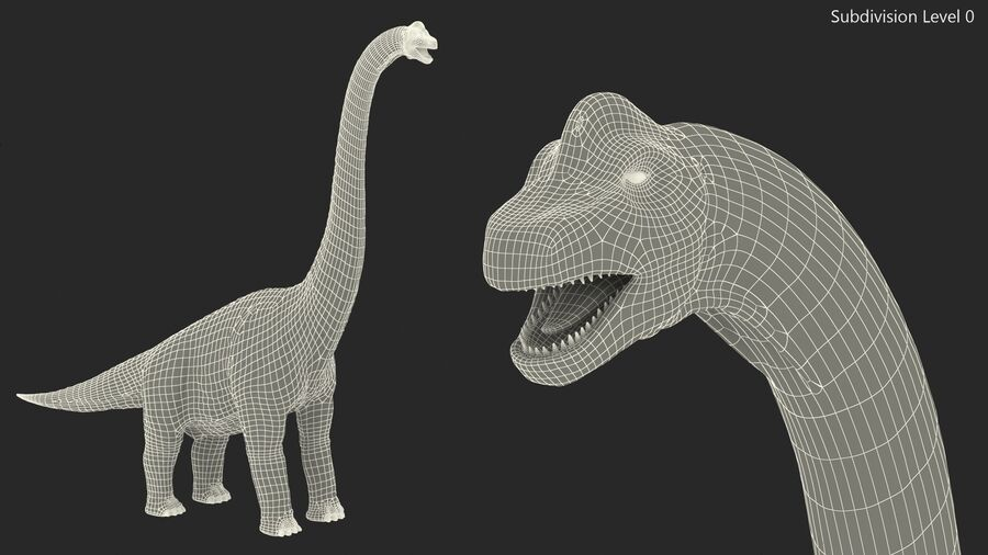 Brachiosaurus Altithorax aparejado royalty-free modelo 3d - Preview no. 24