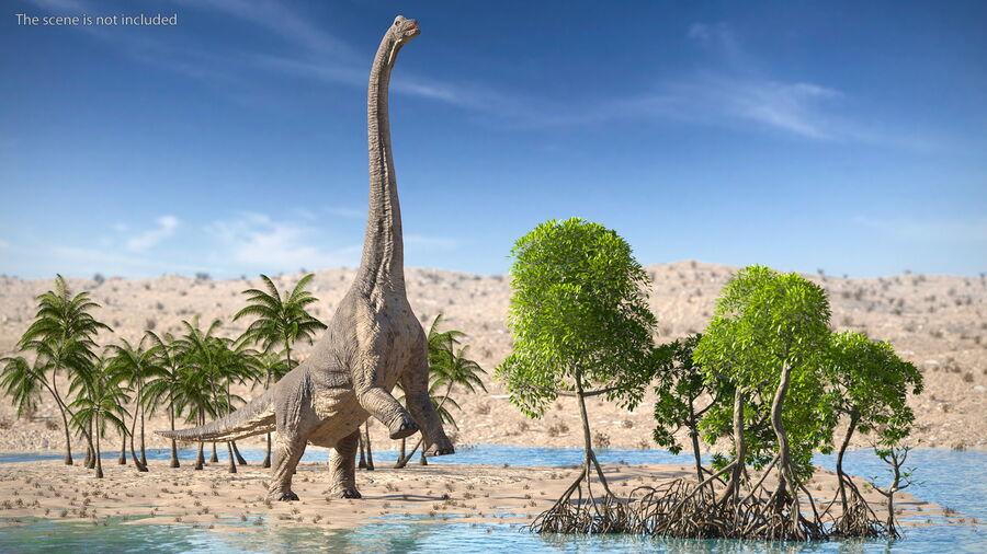 Brachiosaurus Altithorax aparejado royalty-free modelo 3d - Preview no. 6