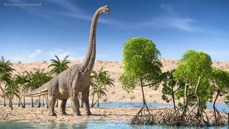 Brachiosaurus Altithorax aparejado royalty-free modelo 3d - Preview no. 5