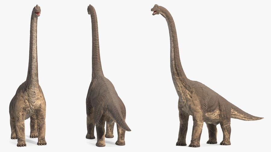 Brachiosaurus Altithorax aparejado royalty-free modelo 3d - Preview no. 13