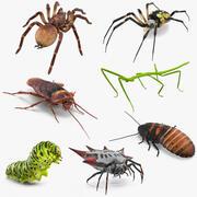 Collection d'insectes rampants rigged pour Cinema 4D 3d model
