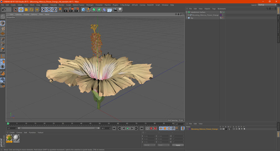Blooming Hibiscus Flower Orange royalty-free 3d model - Preview no. 22