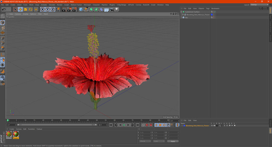 Blooming Red Hibiscus Flower royalty-free 3d model - Preview no. 22