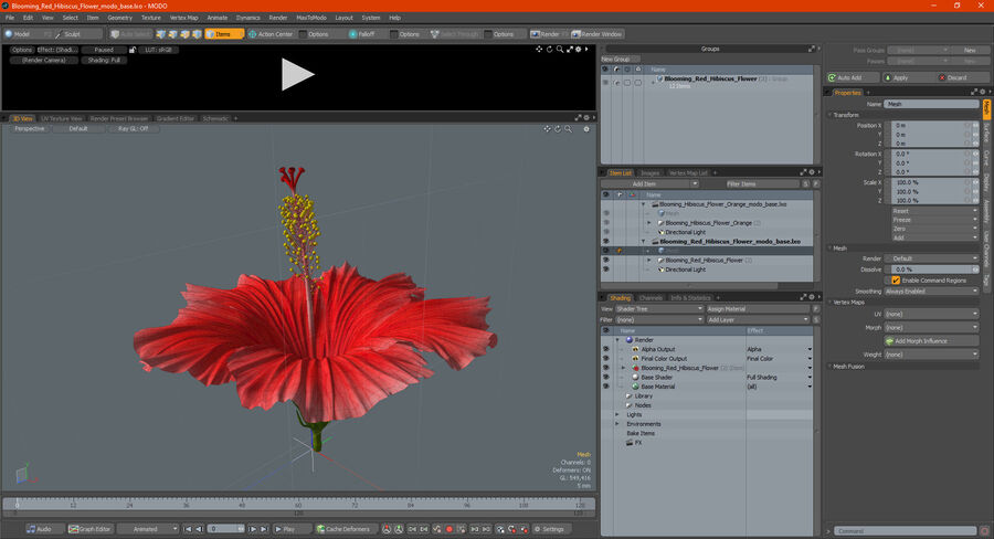 Blooming Red Hibiscus Flower royalty-free 3d model - Preview no. 25