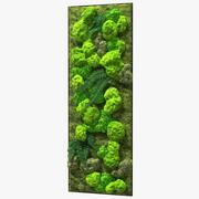 Grüne Mooswand mit konservierten Pflanzen 3d model