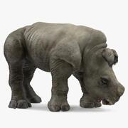 Baby Rhino Bere Pose Pelliccia 3d model