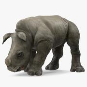 Baby Rhino Bere Posa 3d model