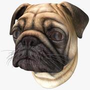 Pug Köpek Kafası 3d model