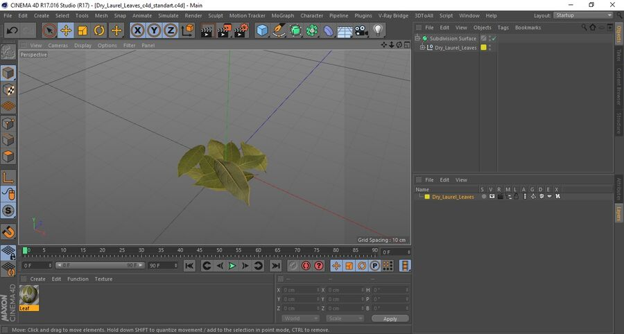 Dry Laurel Leaves royalty-free 3d model - Preview no. 19