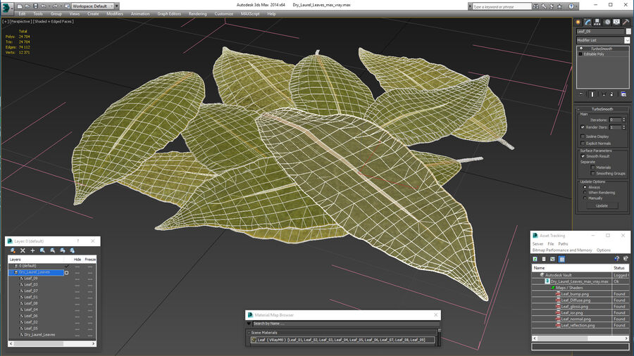 Dry Laurel Leaves royalty-free 3d model - Preview no. 25
