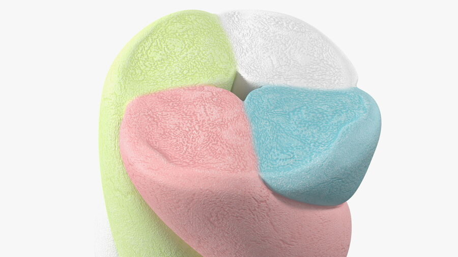 Multi Colored Marshmallow Twists royalty-free 3d model - Preview no. 14